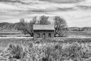 Wyoming Cabin B&W